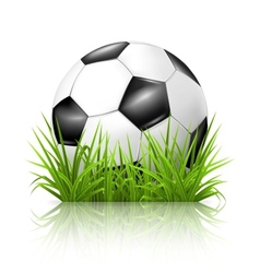 Soccer ball on grass vector image vector image