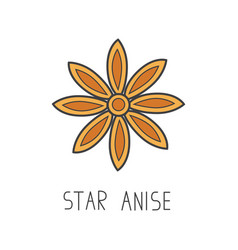 Star anise line cooking vector