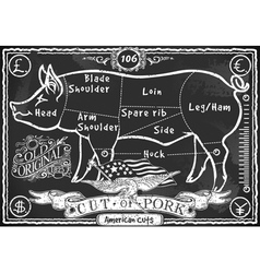 Vintage Blackboard American Cut of Pork vector