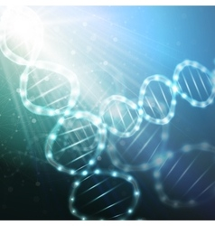DNA molecule structure on a blue background vector image