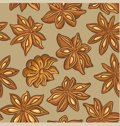 Anise pattern vector