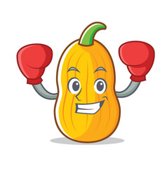 Boxing butternut squash character cartoon vector