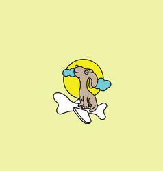 flying dog logo vector image