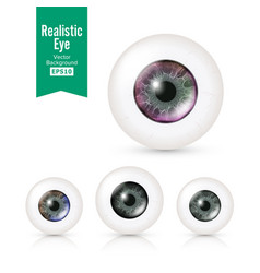 human eyeballs set with big irises in colour vector image
