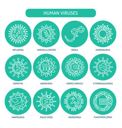 Human virus types icon set in thin line style vector