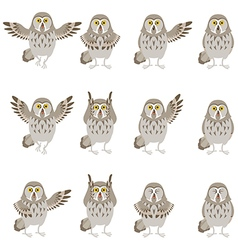 Set of flat grey owl icons vector