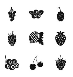 garden berries icon set simple style vector image vector image