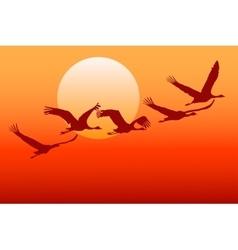 Flying crane vector image vector image