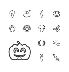 13 vegetable icons vector