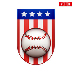 baseball badge and label with usa flag vector image