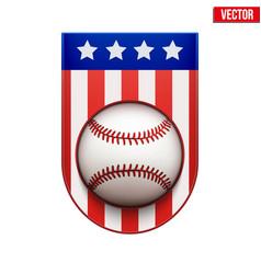 baseball badge and label with usa flag vector image