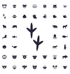Bird footprint icon vector