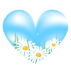 camomile in sky heart vector image