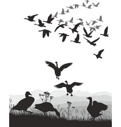 Geese - winged migration vector