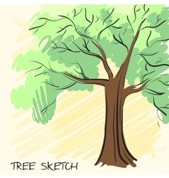 Lonely green tree Corporate identity is drawn by vector