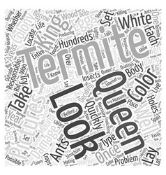 Termite Pictures Word Cloud Concept vector