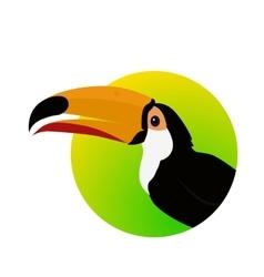 Toucan bird flat design vector
