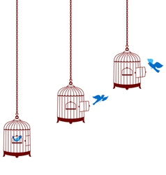 Bird leaving cage and return in the cage vector image