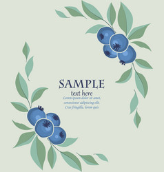 Background of blueberries fruit vector