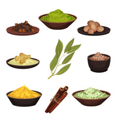 Flat set of various natural spices vector