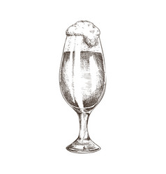 Glass filled with beer sketch vector