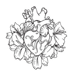Heart with white lilies in romantic style vector