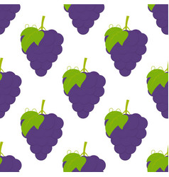 Pattern with grapes vector