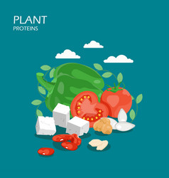 plant proteins flat style design vector image