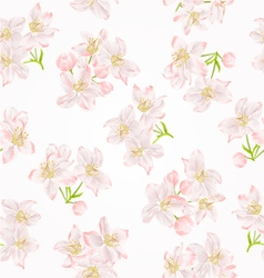Seamless texture branch of apple tree with flowers vector image