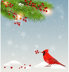 Winter landscape with cardinal bird vector