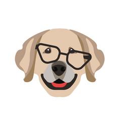 labrador retriever dog in black glasses isolated vector image