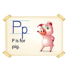 A letter p for pig vector