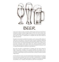 beer goblets collection on poster with text sample vector image