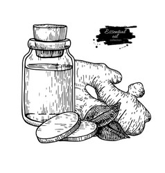 Ginger essential oil bottle and ginger root hand vector