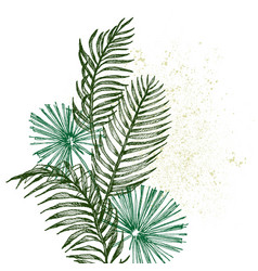 hand drawn branches and leaves tropical plants vector image