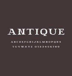 serif font in elegant style vector image
