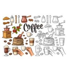 set coffee sugar beans spoon glass latte vector image