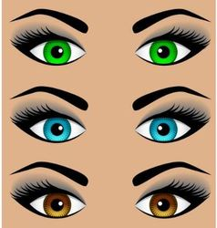 Set the eyes of different colors vector image