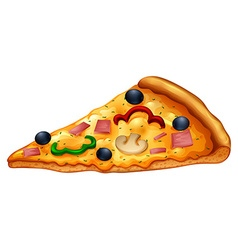 Slice of pizza on white vector