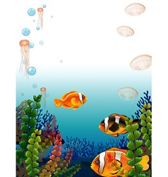 Underwater scene with fish swimming vector