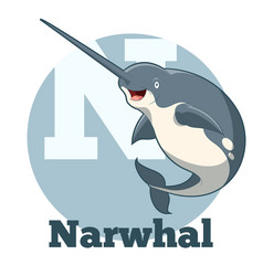 abc cartoon narwhal vector image vector image