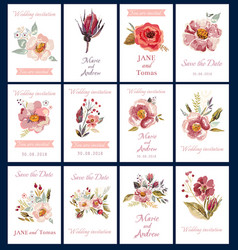 decorative cards vector image