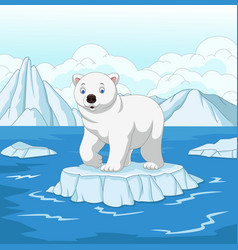 Cartoon polar bear isolated on ice floe vector