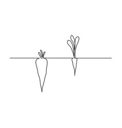 Continuous one line carrot in ground two carrots vector