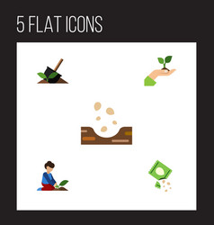 Flat icon plant set of packet soil seed and vector