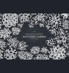 floral design with chalk succulent echeveria vector image
