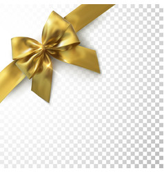 golden bow and ribbon vector image