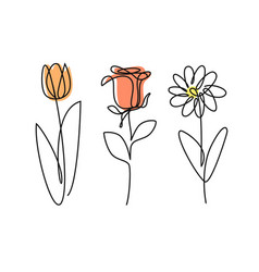 Continued line doodle three flowers vector