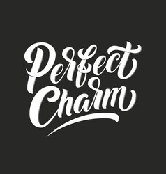 hand drawn lettering perfect charm with outline vector image