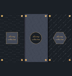 luxury packaging with arrows vector image